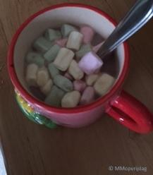 Terugblik_Chocolademelk