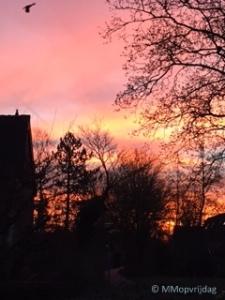 Terugblik_een prachtige zonsopkomst