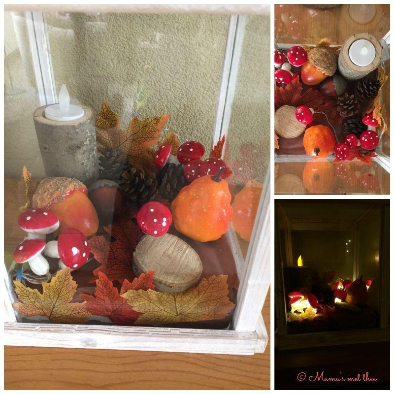 Diy herfst van boom tot decoratie mama 39 s met thee for Herfst decoratie