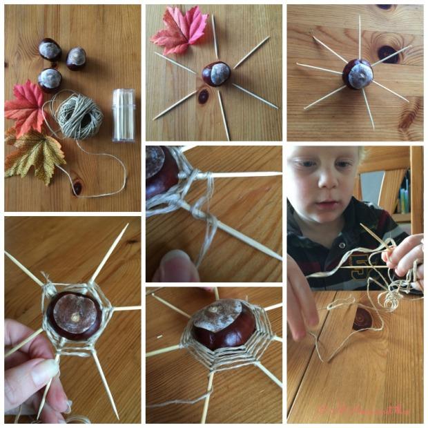 Spinnenweb_kastanjes