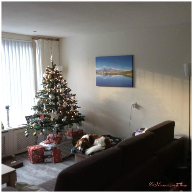 waar laten we de kerstboom