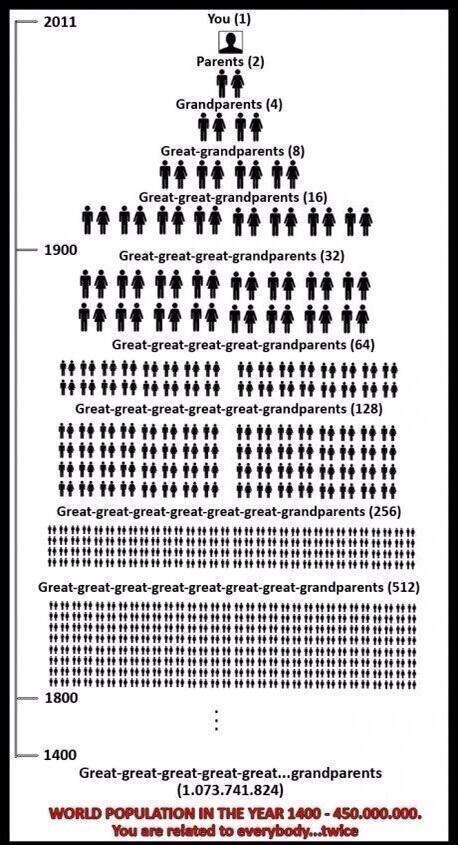 stamboom wereldbevolking