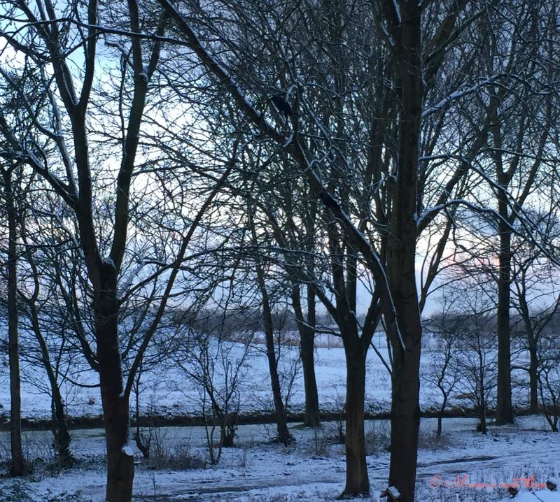 winteruitzicht
